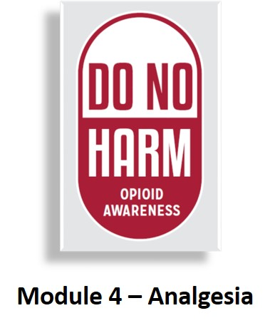 DNH: Module 4 - Analgesia Banner